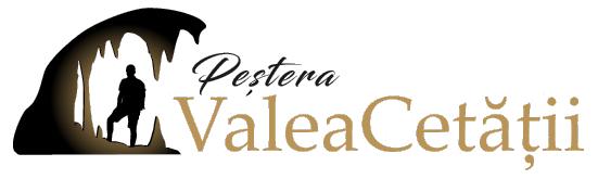 Valea Cetatii Logo